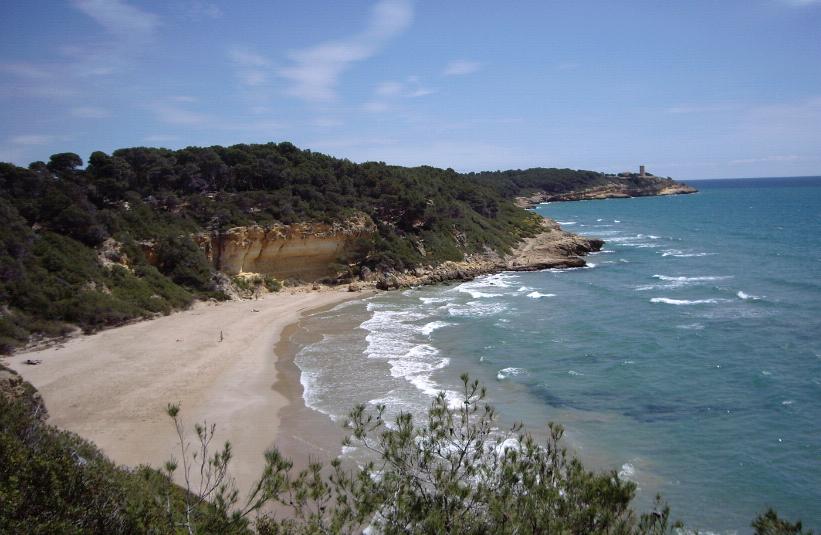 beaches of the Catalan coast cala fonda